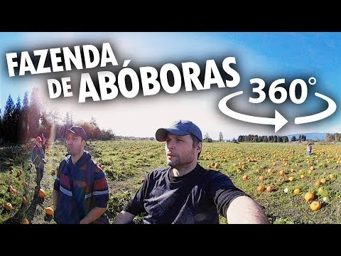 FAZENDA DE ABÓBORAS EM 360 GRAUS - Canadá 360° #7 - feat. TOGETHER
