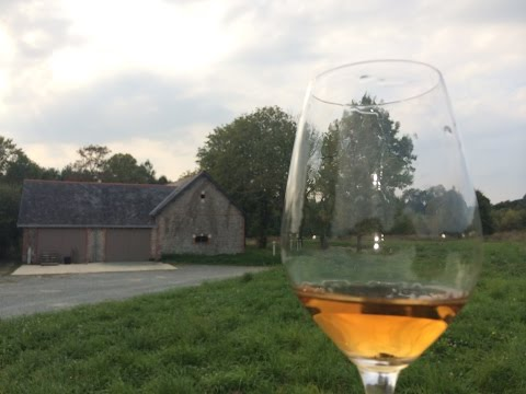Travel to Loire Valley France: Uncorking the French Wine Region  - Wine Oh TV