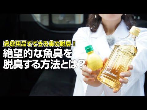 【釣り人必見!】車のシートに付着した魚臭を手軽に脱臭する方法を紹介[家庭用品でできる車の脱臭]