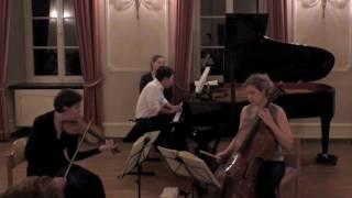 Johannes Brahms Klaviertrio H-Dur op.8, Allegro con brio