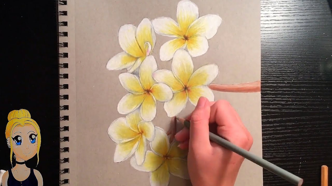 How To Draw Realistic Flowers With Colored Pencils Youtube