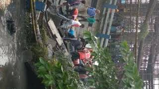 Majher Hat bridge collapse video's