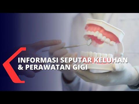 Mengenal Penyebab U0026 Cara Mengatasi Keluhan Akar Gigi Yang Tertinggal Hingga Gagal Pencabutan Gigi