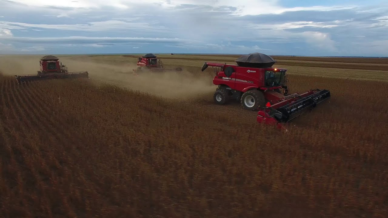 BEHIND THE WHEEL: Case IH and New Holland mark the start of Brazil's soybean harvest