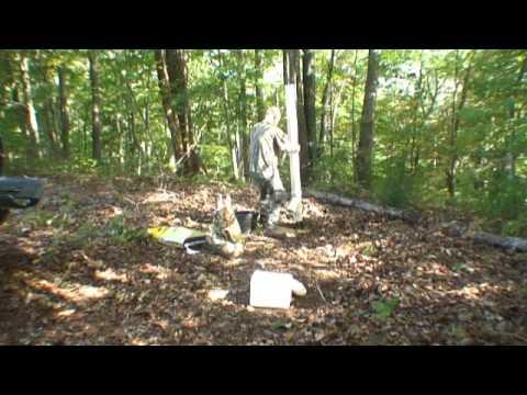 a build bird wild gravity feeder free plans how to