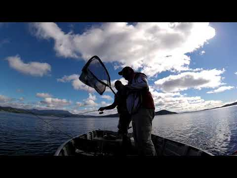 Squid Session (Calamari) -  North West Bay Tasmania