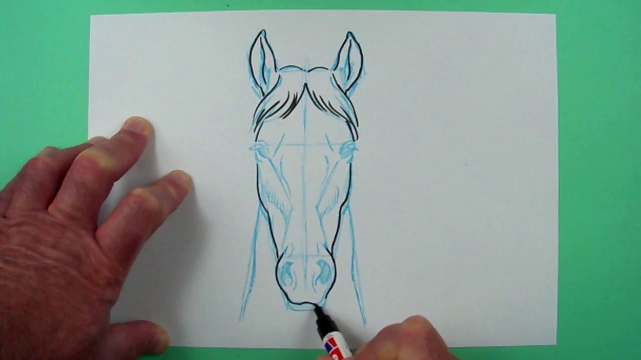 Wie Zeichnet Man Einen Pferdekopf Von Vorn Zeichnen Fur Kinder Youtube