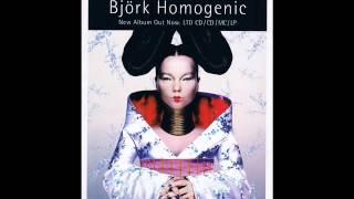 Björk-Immature (rare version)
