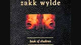 Zakk Wylde - Between Heaven And Hell.wmv