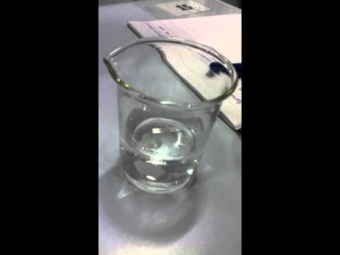Magnesium Reacting With Water.