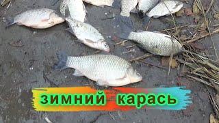 КРУПНЫЙ КАРАСЬ НА ФИДЕР ЗИМОЙ РВЕТ ПОВОДКИ ДНЕСТР Рыбалка это жизнь