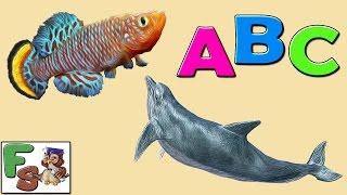 Fairy alphabet /  ABC songs/ fish, part 1 /  Nursery Rhymes / cartoon for kids, children/FS
