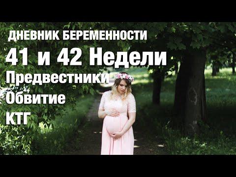 41 и 42 недели. Что происходит с ребенком? IRENA BERRY