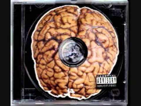 Green Day Brain Stew