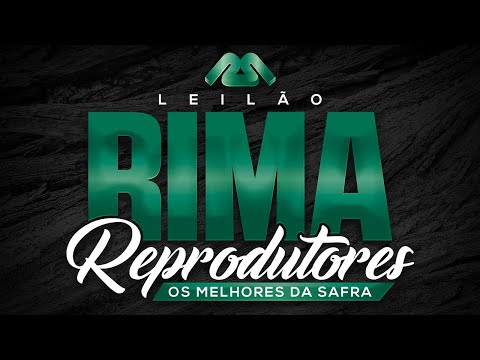 Lote 25   Rima FIV Neoch   RIMA A4285 Copy