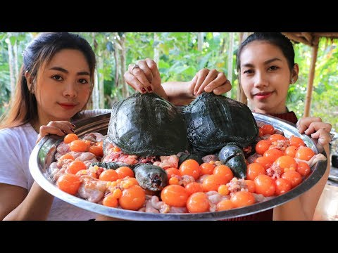 Yummy cooking turtle soup with egg recipe - Natural Life TV