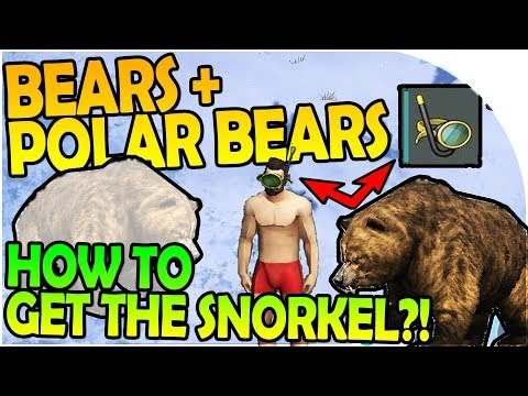 NEW BEARS + POLAR BEARS INBOUND - HOW TO GET THE SNORKEL?! - Last Day On Earth Survival 1.6.2 Update