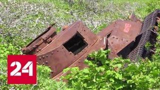 Последний остров войны: курильские поисковики завершили экспедицию на Шумшу
