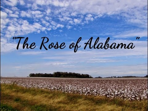 THE ROSE OF ALABAMA - 1846 - Performed By Tom Roush