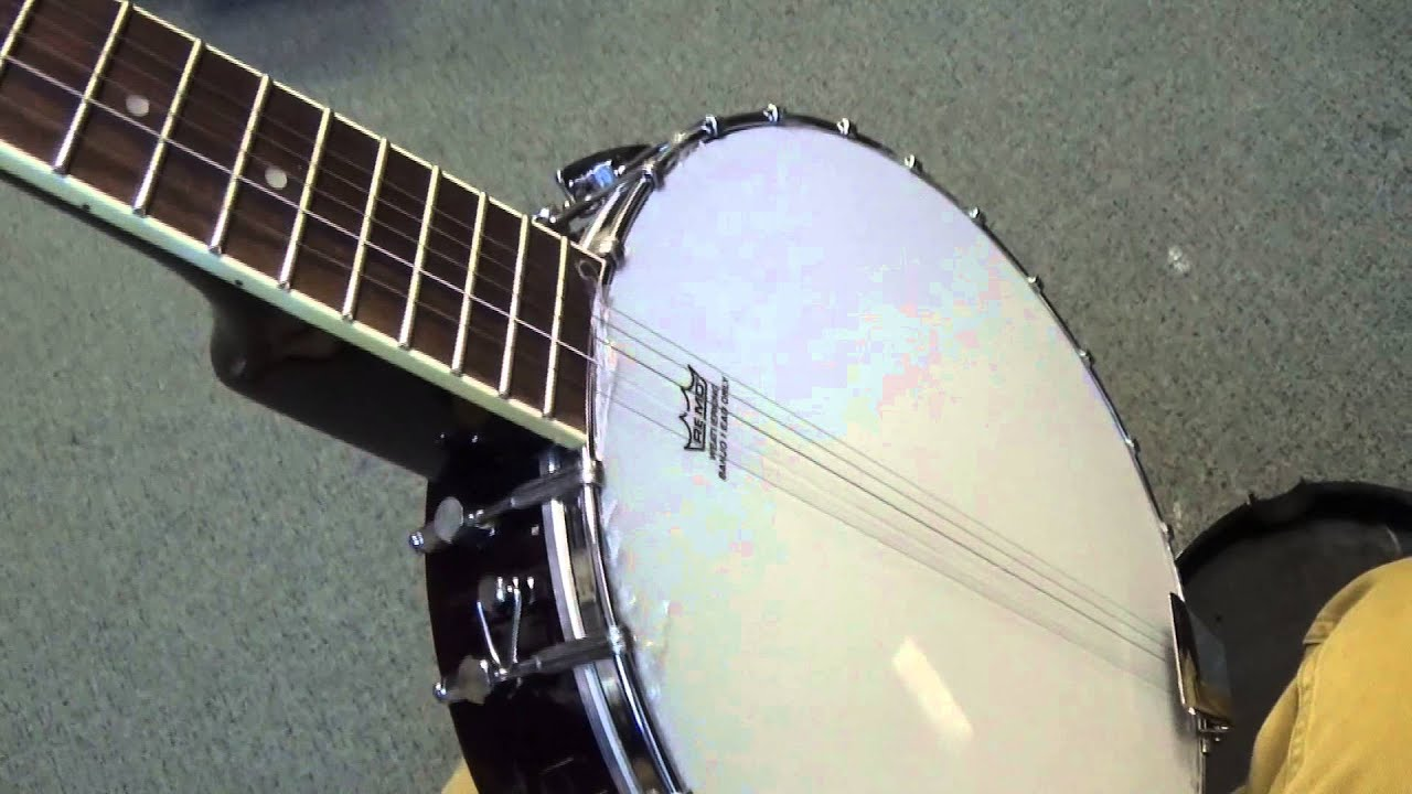 Which is the best banjo for beginners? | Musical Instru