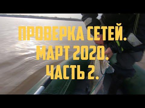 Проверка сетей, март 2020, часть 2 | Fishing with nets in Finland