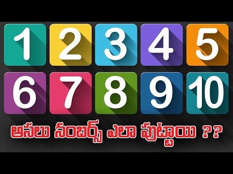 Secret Behind The Origin Of Numbers | Numbers Mystery | 123 Telugu Facts