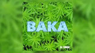 Dr SWAG BAKA