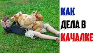 Лютые приколы. Max Maximov Угарные мемы.