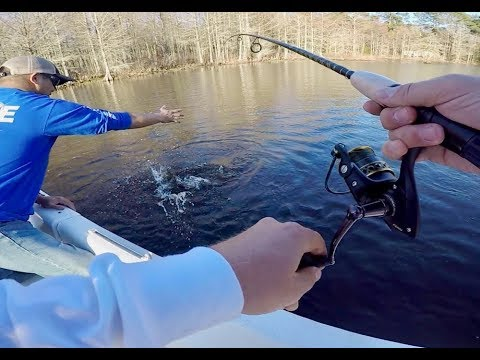 RIVER MONSTER Caught While BASS FISHING - VIRGINIA BASS FISHING