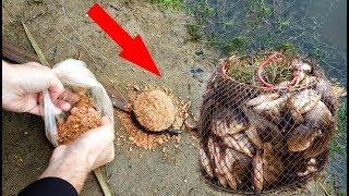 КАРАСИ НА ПРИКОРМКУ для ЛЕЩА На рыбалке тест и эксперимент реакция рыбы на прикормку видео