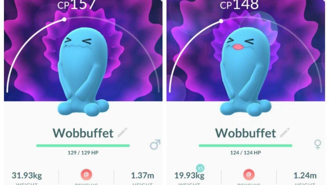 Different Versions Male And Female Wobbuffet - Pokmon Go -7988