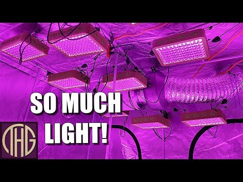 How To Set Up A Grow Tent For Indoor Gardening!