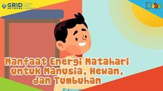 Manfaat Energi Matahari untuk Manusia, Hewan, dan Tumbuhan