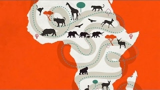 A Changing Africa - African Wildlife Foundation