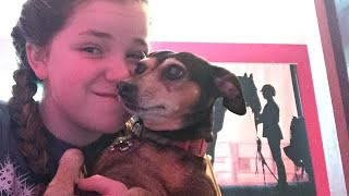 Asmr with my pets???