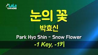박효신(Park Hyo Shin) - 눈의 꽃 (-1키…