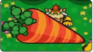Download Mario Luigi Bowser S Inside Story 3ds Walkthrough