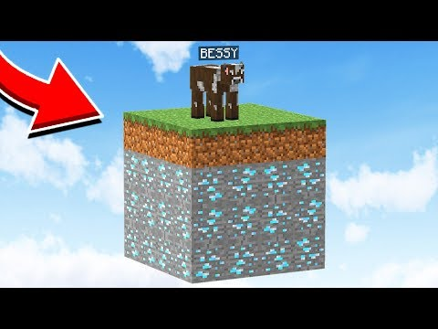 SURVIVING WITH BESSY IN MINECRAFT!