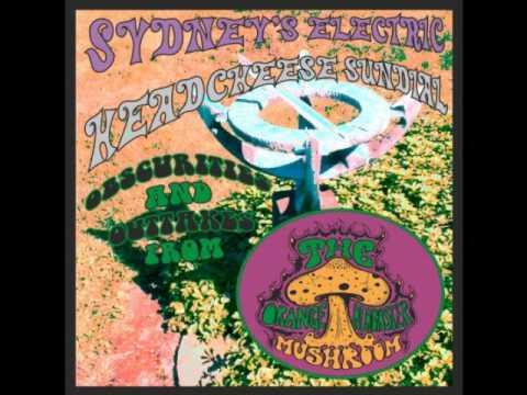The Orange Alabaster Mushroom - Fuzzy Hefner (GARAGE PUNK REVIVAL/NEO-PSYCHEDELIC INSTRUMENTAL)