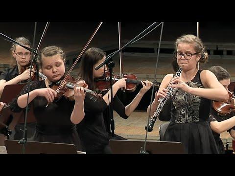 Johann Sebastian Bach - Concerto for oboe & violin BWV 1060