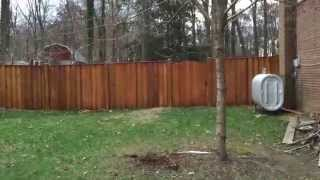 Fence With Stain