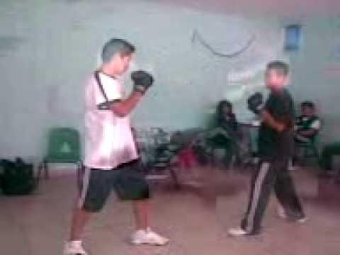 peleas peronas