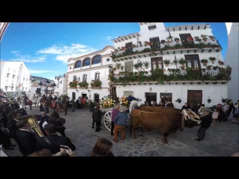 Romería Canillas de Albaida 2017
