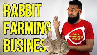 #21 Rabbit Farming Business Idea  | 100 Easy Business Ideas in URDU