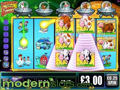 Moolah Slot Machine Cow