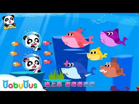 【原創兒歌】鯊魚一家睡覺了+更多合集 | 兒童卡通動畫 | 幼兒音樂歌曲 | 兒歌 | 童謠 | 動畫片 | 卡通片 | 寶寶巴士 | 奇奇 | 妙妙
