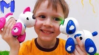 Макс открывает и играет в игрушки : кошка Муко и собака Руффи РОБОТЫ SILVERLIT