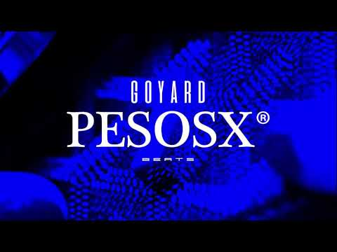 "[FREE] ""Goyard"" Trippie Redd X Nick Mira Type Beat 2019 (Prod. @pesosx)"