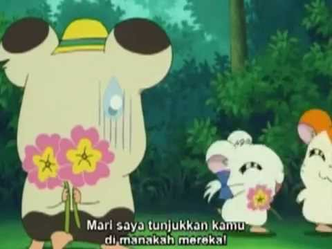 hamtaro in the end amv