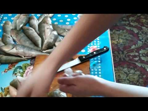 Окунь с червями ( Днепр )